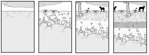 Formación_del_suelo